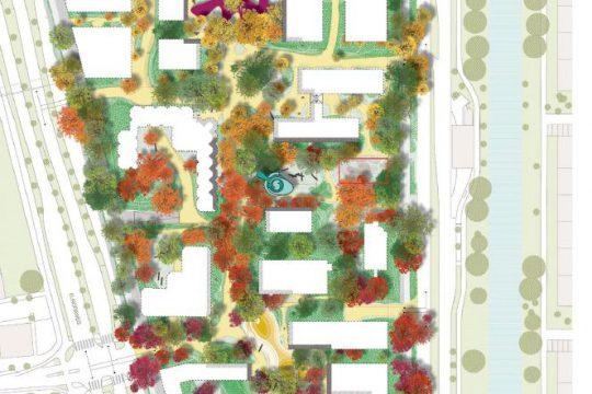 Illustratie bomen uit 'Stad tussen de bomen'